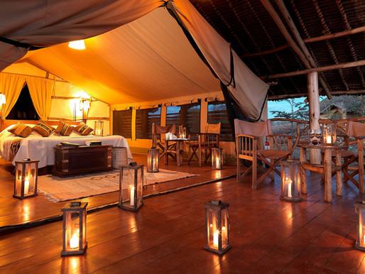 African Wilderness Meets Luxury and Comfort