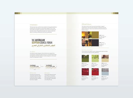 AECF_StyleGuide_Flat_v01.jpg