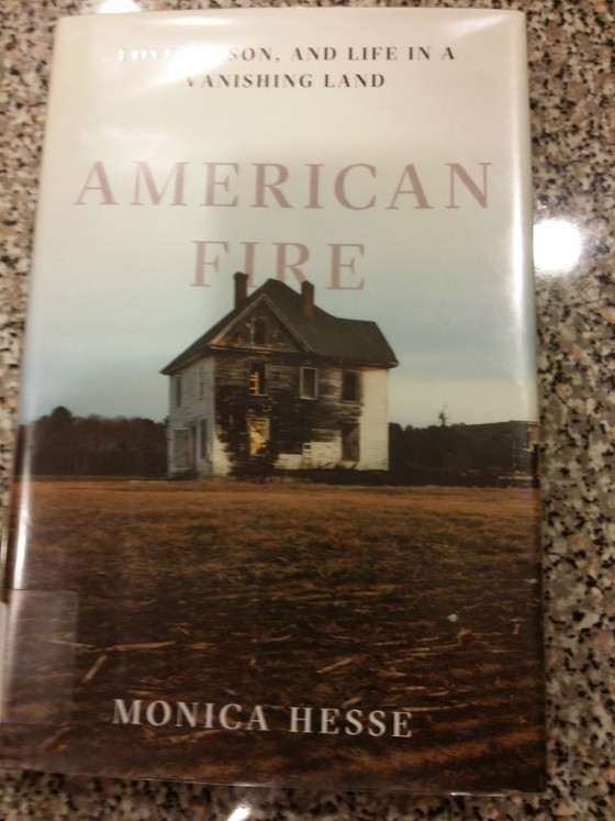 American Fire, Monica Hesse