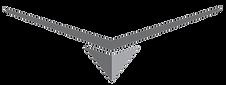 V-Hull-Logo.png