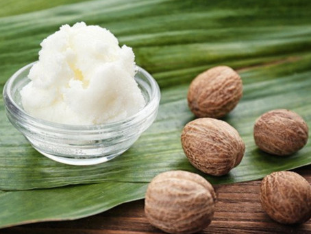 Shea Butter - Discover Its Amazing Benefits