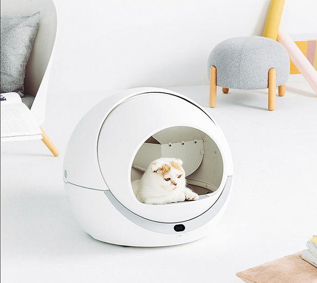 Cat Scoop Free Litter Box