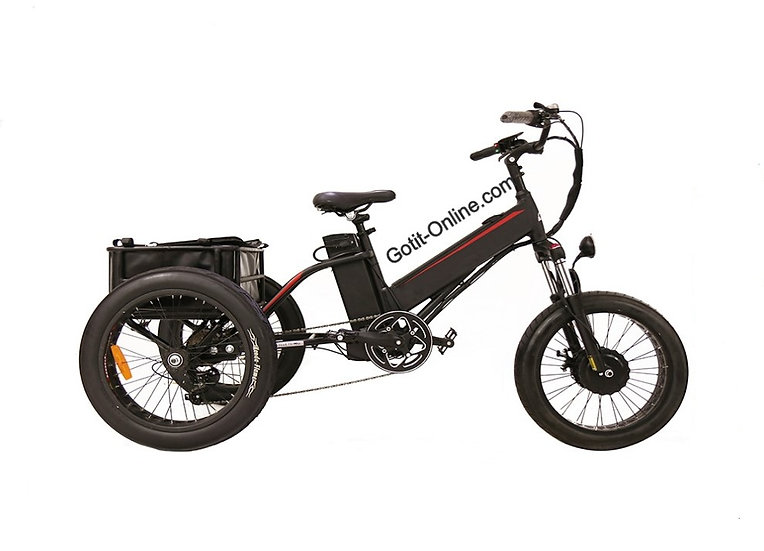 3 Wheel Cargo Delivery Electric Bike