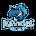 ravens esport trans.png