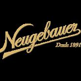 Logo_Neugebauer_Wix.png