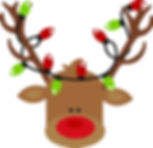 reindeer with christmas lights.jpg