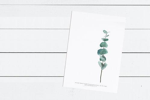 Baby Blue Eucalyptus Print - Ecclesiastes 3:11