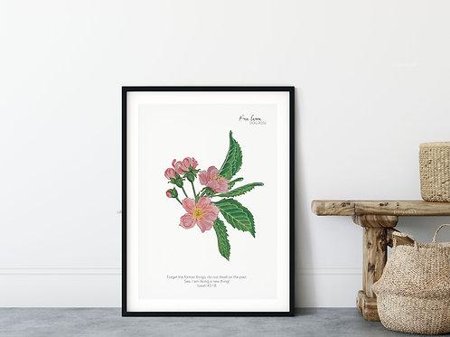 Dog Rose Vintage Floral Print - Isaiah 43:18