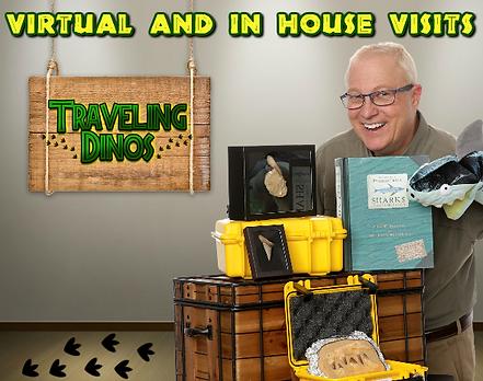 travelingvirtualsharkie.png