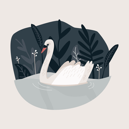 "Illustration ""Schwan"""
