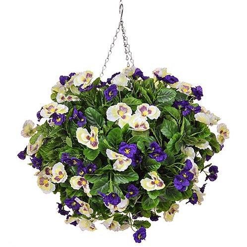 Hanging basket Pansies