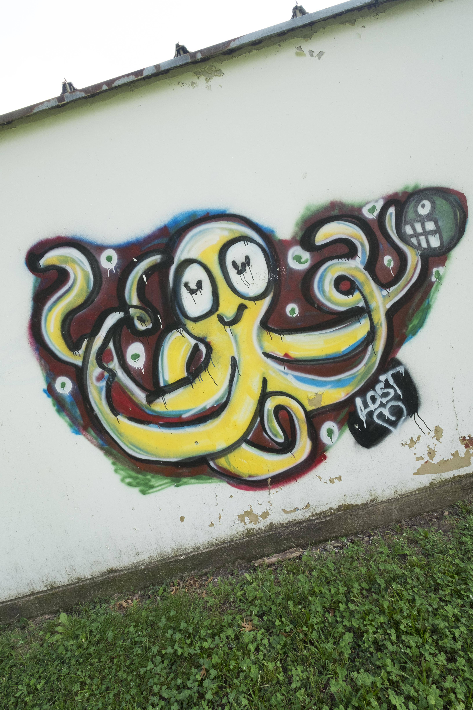Octopus grafitti