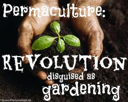 PermacultureREVOLUTIONdisguisedAsGardening.jpg