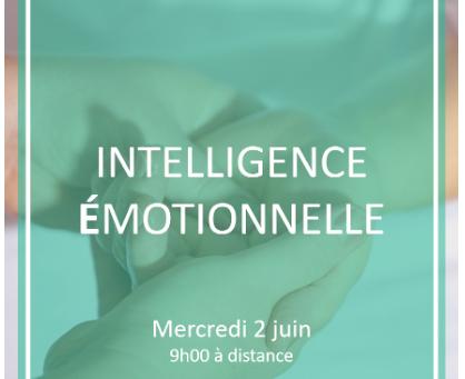"""""""Intelligence Emotionnelle : un activateur de performance """" - AFJE - 2 juin 2021 -  9H00-11H00"""
