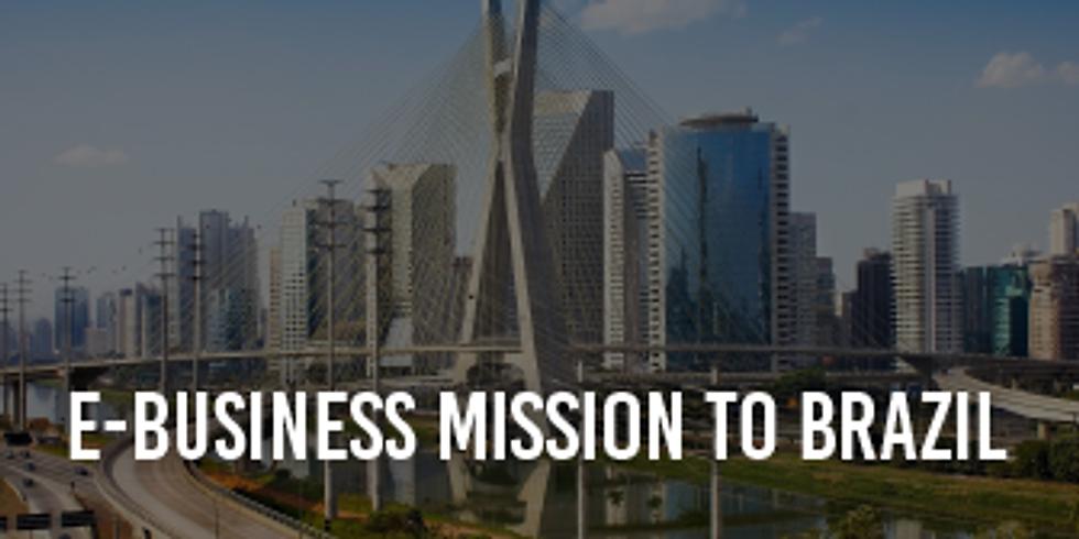 E-Business Mission to Latin America (Brazil)