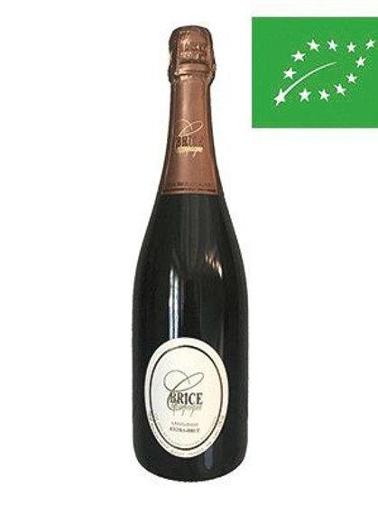 Champagne Extra Brut Brice BIO AOP