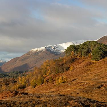 Loch Affric Pano - 4367-4372 - LR (1 of