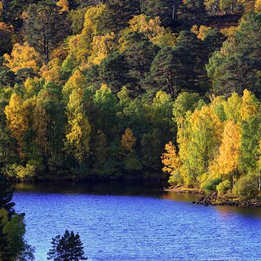 Loch Beinn a' Mheadhain - 27092_3_4