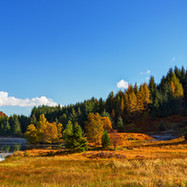 Loch Drunkie - 26566_7_8.jpg