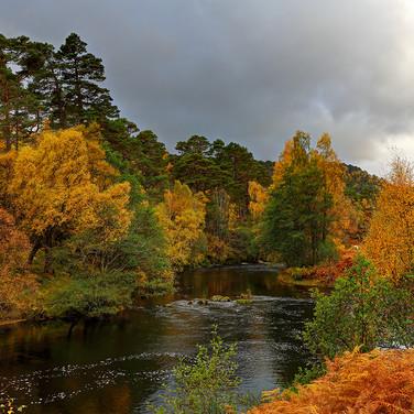 River Farrar - 27781_2_3.jpg