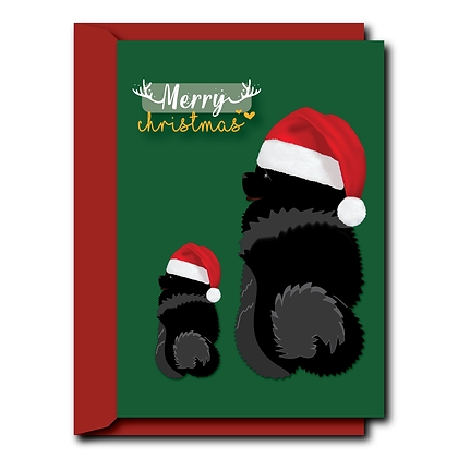 Chow Chow with Christmas hat