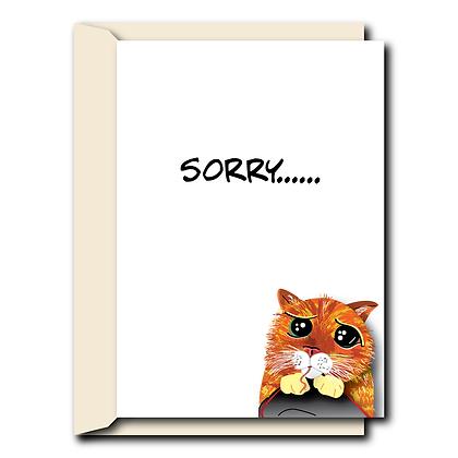 Sorry......
