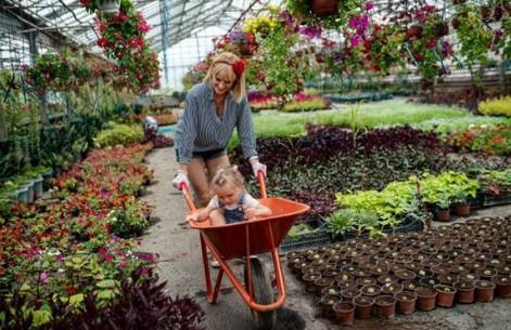 Greenhouse Master 2 (2).jpg