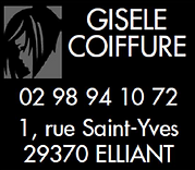 gisele coiffure.png