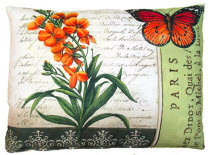 TB Pillow, Snapdragon, DB4OLCS, 18x18