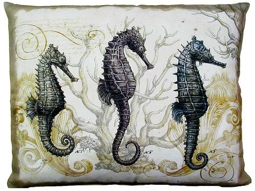 Seahorse, SEAHP, 19x24
