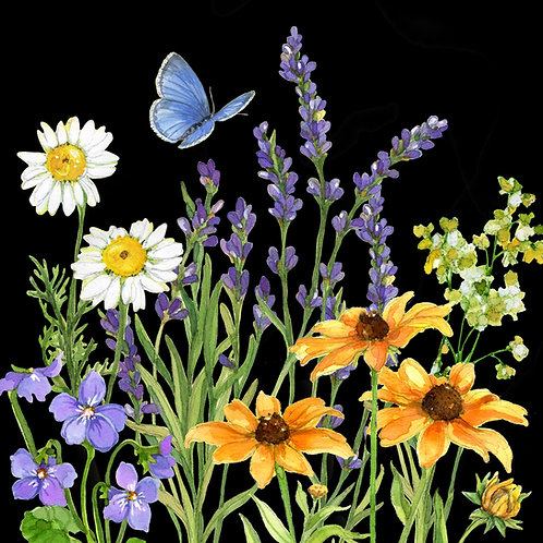 "SR209LCS, Floral w/ Black Background, 18""x18"""