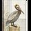 Thumbnail: Pelican on Perch, SW902, 2 sizes