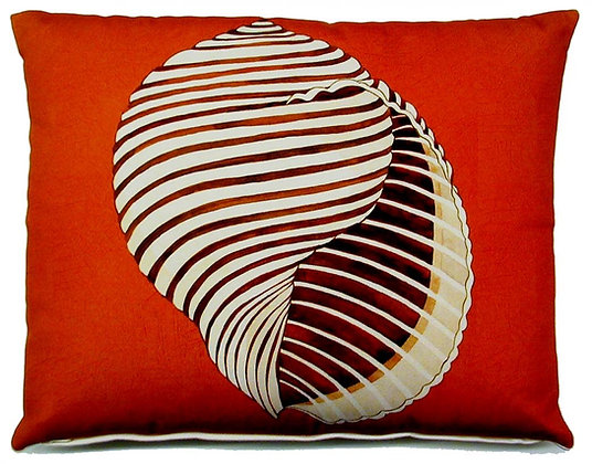 Seashell, CHCHHP, 19x24