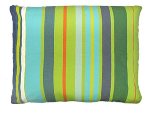 Citrus Pillow, 19x24, CT273HP