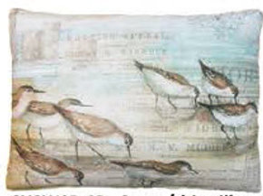SC Pillow, Seabirds, SWSBLCS, 18x18