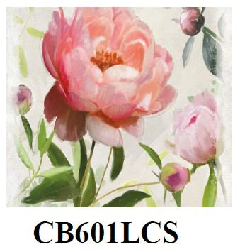 Peony, CB601LCS, 18x18 only