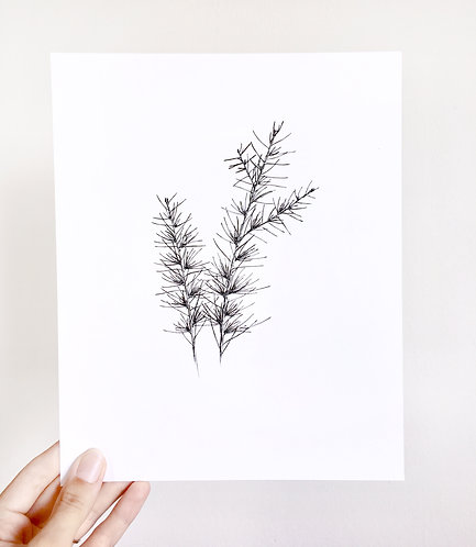Original Floral Ink Illustration. Pine Branch. Black Ink Botanical Illustration.