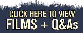 Q&As-Blue.png