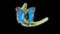 IMG_0980_edited_edited.png