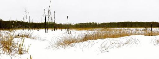 "Still point Gallery - Geoff Baker  ""Winter Sweep"""