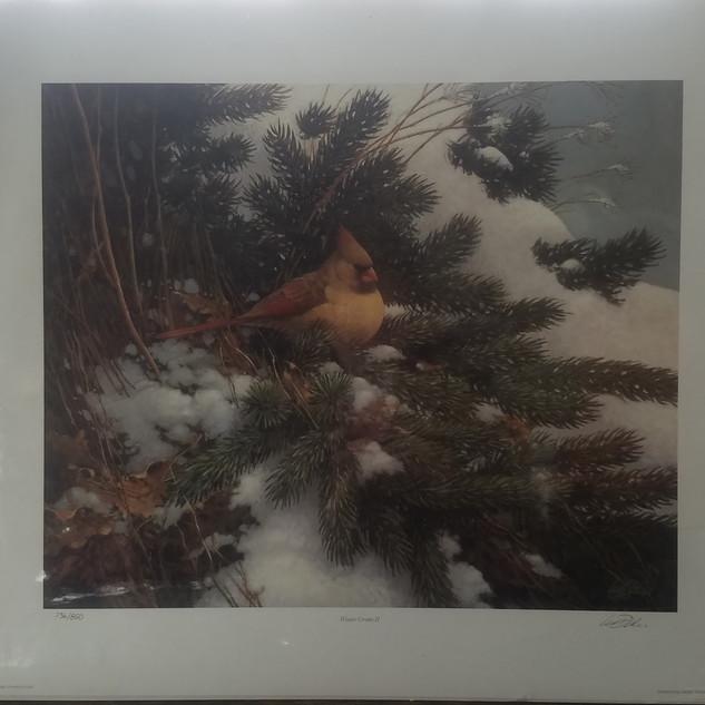 "Les Didier ""Winter Grotto II"""