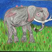 """Elephant"" Barbara Cox"