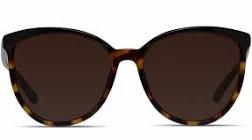 sunglasses, fashion, fashion sunglasses, tortoise sunglasses, tortoise shell sunglasses, tortoise shell, sunnies