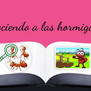 Explicación hormigas 3.0.
