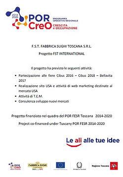 Progetto FST INTERNATIONAL.JPG