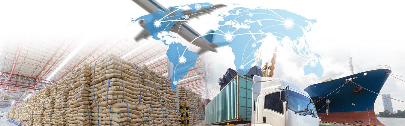 import-export.jpg
