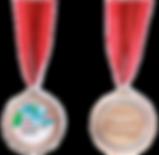 Voltex Medals