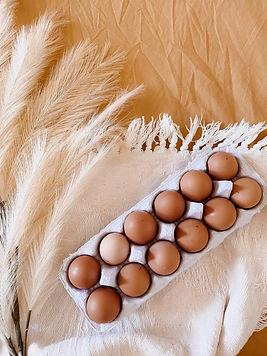 australian eggs adelaide myponga beach fresh produce local