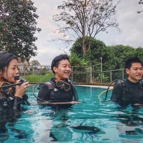 Monkey dive thailand 9.jpg