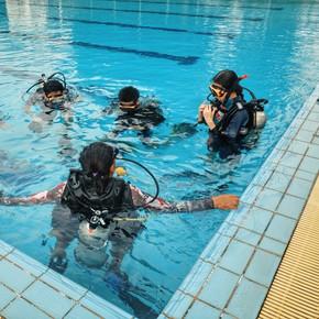 Monkey dive thailand 8.jpg